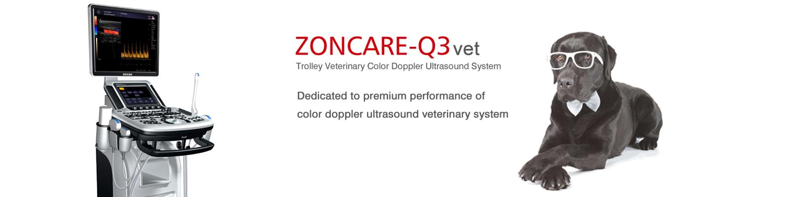 oferta ultrasonografów dla weterynarii